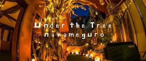 中目黒ヨガスタジオ、Under the tree nakameguro